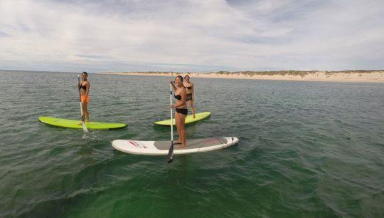 SUP Intermediate Lesson & Tour Coral Coast Tour