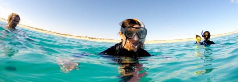 Snorkelling Gear for Sale & Hire